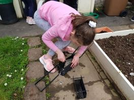 After School Gardening Club - Week 2 for Group 2